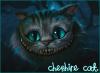 Cheshire Cat 2O1O
